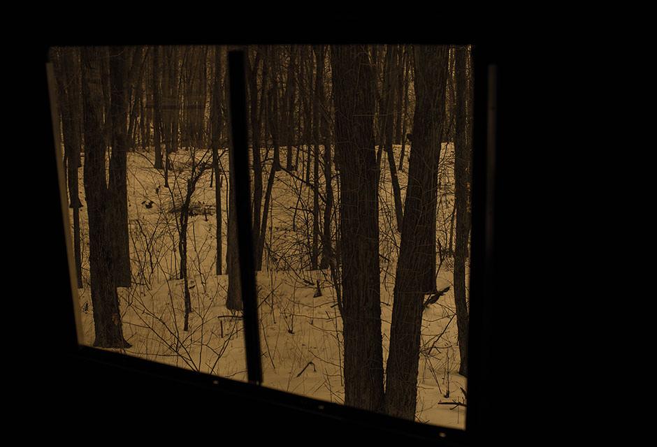 Stealthslider Tinted Windows Oakridge Hunting Blinds